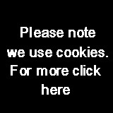 We use cookies only to provide the service requested - nothing else